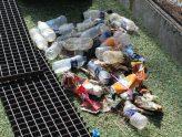 Συμμετοχή του Σχολείου μας σε δράση για την Παγκόσμια Ημέρα Περιβάλλοντος