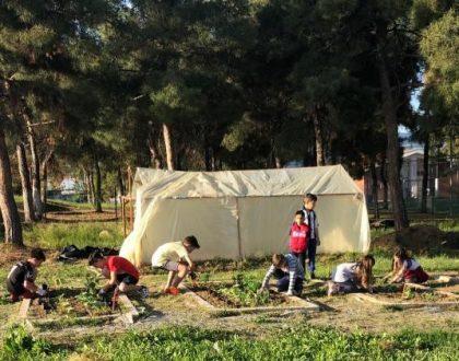 Έπαιζαν με τις λάσπες και  σπείραμε τα φυτά μας!