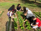 Αγάπη για την καλλιέργεια της τροφή μας!